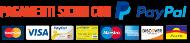 icona pagamenti PayPal